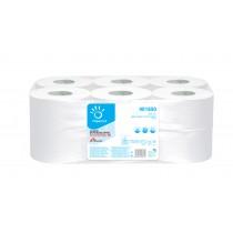 Toilettenpapier Grossrolle Zellstoff  2-lagig